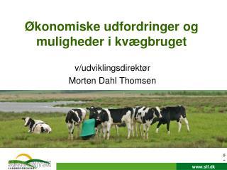 Økonomiske udfordringer og muligheder i kvægbruget