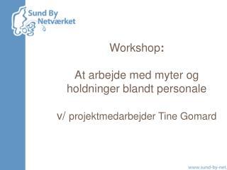 Workshop : At arbejde med myter og holdninger blandt personale v/  projektmedarbejder Tine Gomard