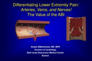 Amjad AlMahameed, MD, MPH Division of Cardiology Beth Israel Deaconess Medical Center Boston