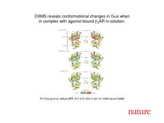 KY Chung  et al. Nature 477 ,  611 - 615  (2011) doi:10.1038/nature10488