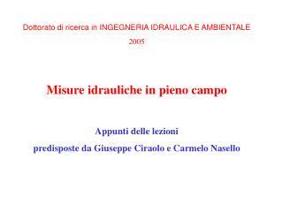 Dottorato di ricerca in INGEGNERIA IDRAULICA E AMBIENTALE 2005 Misure idrauliche in pieno campo