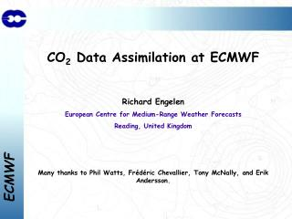 CO 2  Data Assimilation at ECMWF