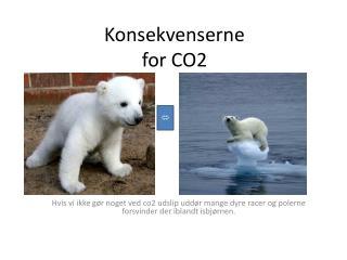 Konsekvenserne for CO2