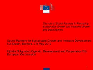 The role of Social Partners in Promoting Sustainable Growth and Inclusive Growth and Development