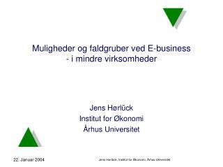 Muligheder og faldgruber ved E-business  - i mindre virksomheder