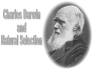studied to become a clergyman at Cambridge University (1827-1831)