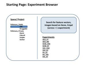 Starting Page: Experiment Browser