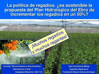 "Jornada ""Recrecimiento o decrecimiento. Alternativas a  Yesa "" Sangüesa (Navarra)   (28-9-13)"