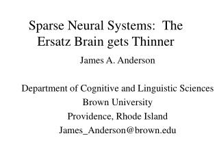 Sparse Neural Systems:  The Ersatz Brain gets Thinner