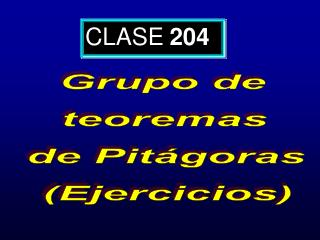 CLASE 204
