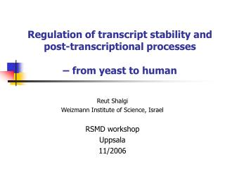 Regulation of transcript stability and post-transcriptional processes –  from yeast to human
