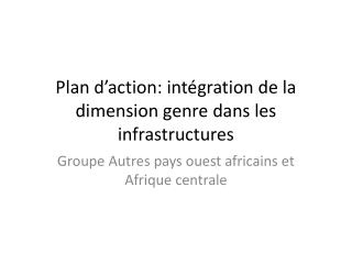 Plan d�action: int�gration de la dimension genre dans les infrastructures