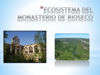 ECOSISTEMA DEL MONASTERIO DE RIOSECO