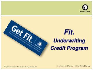 Fit. Underwriting Credit Program