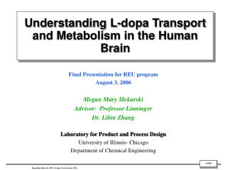 Understanding L-dopa Transport and Metabolism in the Human Brain