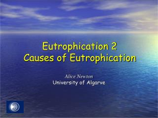 Eutrophication  2 Causes of Eutrophication
