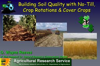 Building Soil Quality with No-Till, Crop Rotations & Cover Crops