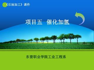 项目五   催化加氢