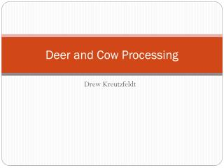 Deer and Cow Processing