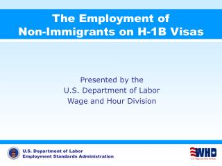 The Employment of  Non-Immigrants on H-1B Visas