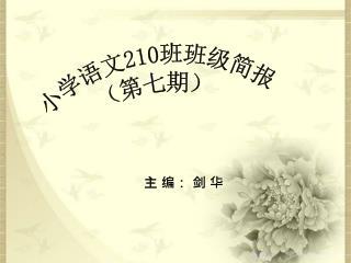 小学语文 210 班班级简报 (第七期)
