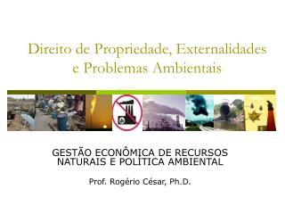 Direito de Propriedade, Externalidades e Problemas Ambientais