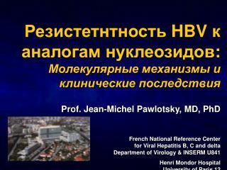 Резистетнтность  HBV  к аналогам нуклеозидов : Молекулярные механизмы и клинические последствия