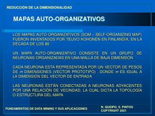 MAPAS AUTO-ORGANIZATIVOS