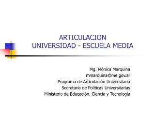 ARTICULACION  UNIVERSIDAD - ESCUELA MEDIA