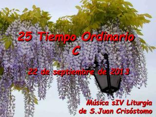 25 Tiempo Ordinario C