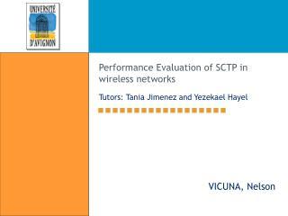 Performance Evaluation of SCTP in wireless networks Tutors: Tania Jimenez and Yezekael Hayel