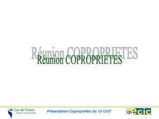 R�union COPROPRIETES