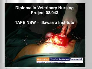 Diploma in Veterinary Nursing  Project 08/043 TAFE NSW – Illawarra Institute