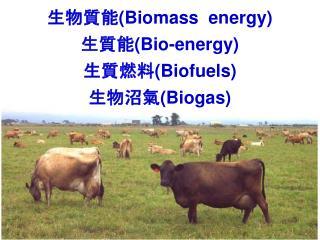 生物質能 (Biomass  energy) 生質能 (Bio-energy) 生質燃料 (Biofuels) 生物沼氣 (Biogas)