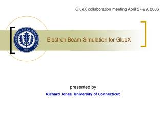 Electron Beam Simulation for GlueX