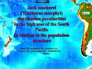 Jack mackerel ( Trachurus murphyi )