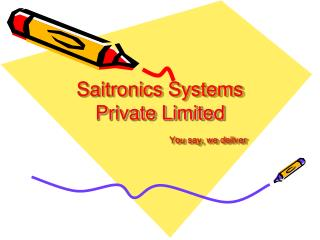 Saitronics Systems Private Limited You say, we deliver