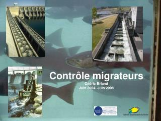 Contrôle migrateurs Cédric Briand Juin 2004- Juin 2008