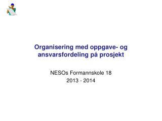 Organisering med oppgave- og ansvarsfordeling på prosjekt