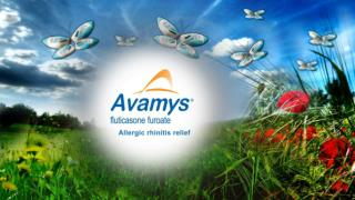 2011 Avamys Campaign