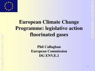 European Climate Change Programme: legislative action fluorinated gases