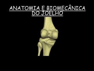 ANATOMIA E BIOMEC�NICA DO JOELHO