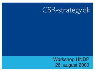 Workshop UNDP 26. august 2009