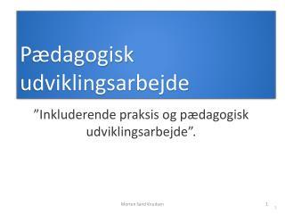 Pædagogisk udviklingsarbejde