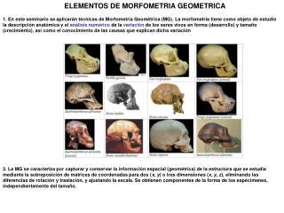ELEMENTOS DE MORFOMETRIA GEOMETRICA