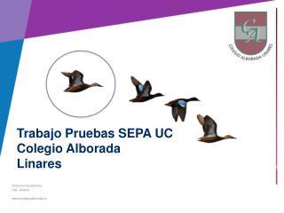 Dirección Académica CAL- Linares colegioalborada.cl