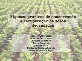 Algumas práticas de conservação e recuperação de solos degradados