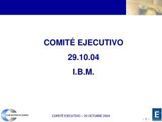 COMITÉ EJECUTIVO 29.10.04 I.B.M.