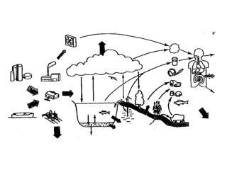 Fugacity Models Level 1: Equilibrium