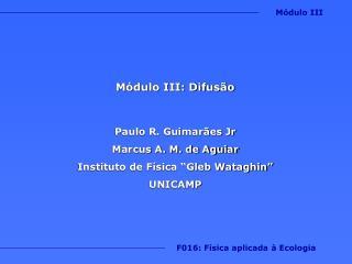 Módulo III: Difusão  Paulo R. Guimarães Jr Marcus A. M. de Aguiar